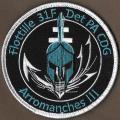 31 F - Det PA CDG - Arromanches III