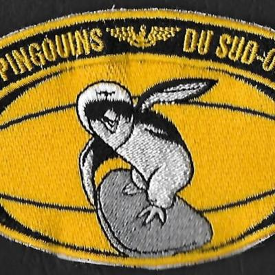 Les Pingouins du Sud-Ouest
