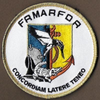 PA Charles de Gaulle - Force Aéromaritime Française de réaction rapide